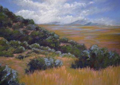 Mount Withington NM