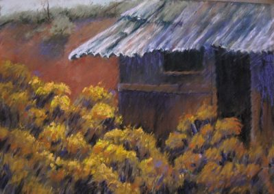 Taos Chamisa